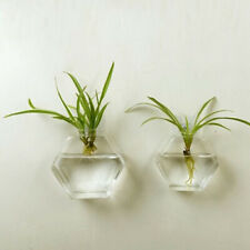 Clear Glass Flowerpot Wall Hanging Planter Hydroponic Vase Hexagon 13cm