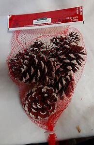 Pinecones Ashland Christmas White Snow on Them USA Unscented Bag Full 45E