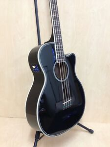 Haze FB-711BCEQ/BK 4-String 4/4 Size Electric-Acoustic Bass Guitar,EQ,Black+Bag