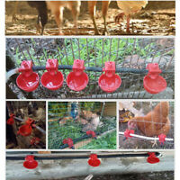 10Pcs Automatic Poultry Water Drinking Cups Bird Coop Fowl Drinker Chicken
