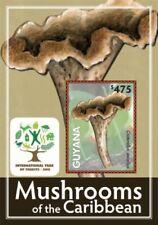 Guyana - 2012 - Mushrooms Of The Caribbean - Souvenir Sheet - MNH