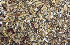 Higgins Sunburst Parrot nuts veggie Food bird diet grey cockatoo 25lb sale