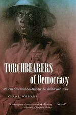 Torchbearers Of Democracy: African American Soldiers In The World War I Era (...