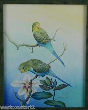 Lloyd Fitzgerald Original Painting Parakeet Budgie Bird Canadian Listed Artist