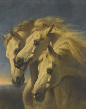 John Frederick Herring Sr Pharaohs Horses Print 11 x 14    #4650