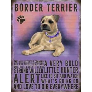 Border Terrier Magnet Gift
