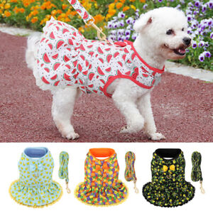 Cute Girl Dog Harness Dress and Lead set Fancy Summer Small Pet Cat Vest Clothes