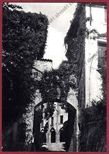 TREVISO ASOLO 20 PORTA LOREGGIA Cartolina FOTOGRAFICA Foto MAZZOTTI