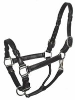 Western Black Twisted Leather Halter with Free Lead Chain