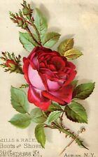 Victorian Trade Card Mills & Race Boots & Shoes, Red Rose Image D1