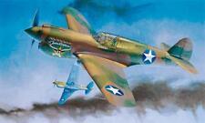 Hasegawa St29 08879 P-40e Warhawk Texas Longhorn USAAF Fighter 1/32 Model Kit
