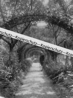 Schloss Greifenstein - Hammelburg - Gartenansicht - um 1915      Z 30-14