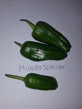 PIMIENTO DE PADRON deliciosos  500 Semillas seeds