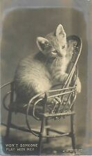 1901-1907 Rotograph Cat RPPC Kitten in Tiny Chair, Wont Someone Play w Me? B 795