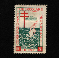 Opc Vintage 5c Trieste tuberculosis Charity Stamp Mh