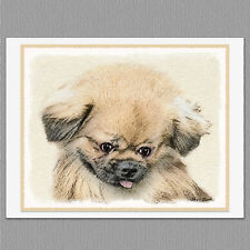 6 Pekingese Dog Blank Art Note Greeting Cards