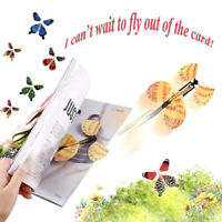 Magic Flying in the Book Butterfly Rubber Band Powered Wind Up Butterfly Toy FN