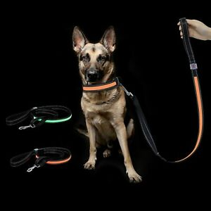 LED Flashing Dog Lead Rope w 3 Flashing Modes, USB Recharge & Adjustable High Vi