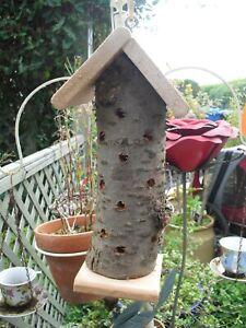 Wooden Ladybird Insect Bug Hotel House Outdoor Garden