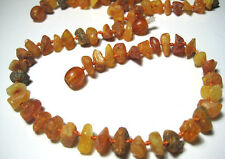 100% Authentic Raw Baltic Amber Collars for Dogs and Cats 11 inch