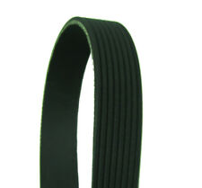 Serpentine Belt-DIESEL Cadna 1189K8