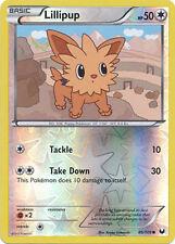 Lillipup Common Reverse Holo Pokemon Card BW5 Dark Explorers 86/108