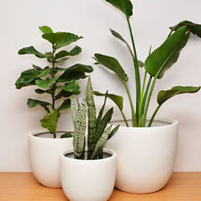 LIGHTWEIGHT PLANT POT - Classic - Planter Natural White - S/M/L or COMPLETE SET
