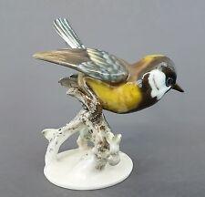 Rosenthal Vogel Figur, Kohlmeise, Entw. Fritz Heidenreich 1937, Höhe ca.13,5 cm
