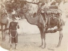 India Camel Decorated Saddle Old Photo 1890