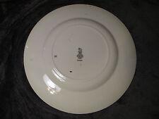 "Royal Doulton Series Ware Rack Plate ""Rochester Castle� England D6308 Excellent"