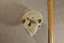 PreColumbian MesoAmerican Shamanic Stone Skull