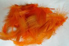 2g FLANC  CANARD montage mouche ORANGE truite colvert