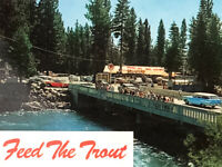Vintage Lake Tahoe Feed the Trout Beaches Skiing Meek's Bay Postcards (Lot of 7)