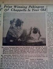 FEB 28,1937 NEWSPAPER PAGE #L4010- CHAPPELL'S PRIZE WINNING PEKINGESE A YEAR OLD