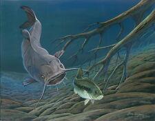 Catfish Print by Doug Walpus Freshwater fishing Wildlife Art, Wall Decor