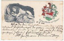 Normalformat Sammler Motiv Ansichtskarten aus der Schweiz