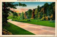 Vtg 1930's Road Scene, Greetings from Albany New York NY Postcard g5082
