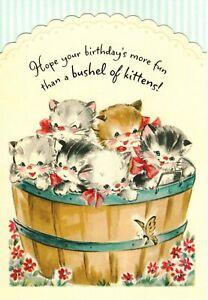 Happy Birthday More Fun Than A Bushel of Kittens Kitty Cats Hallmark Card