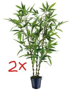 2 sets Artificial Plant Jin Bamboo Tree PU 140cm High, 6 trunk Houseplant Indoor