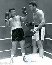 Rocky Marciano vs Muhammad Ali Boxer Boxing 8x10 Photo 006