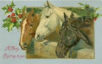 Christmas~ Trio of Pretty~Horses ~with Holly~Antique Embossed Postcard~s842