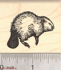 Beaver Rubber Stamp, North American Wildlife G3207 WM