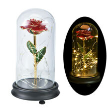 WR Eternal Rose Dipped in 24k Gold Glass Lamp Dome LED Light Gift Beauty & Beast