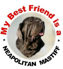 2 Neapolitan Mastiff MBF Car Stickers By Starprint