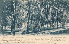 ROCKVILLE CT – Talcott Park Tuck Postcard – udb – 1905