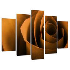 Set of Five Large Orange Floral Canvases Art Prints Living Rooms 5141