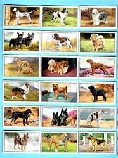 CIGARETTE CARDS. Gallaher Tobacco. DOGS 1st Series. (Complete Set of 48). (1936)