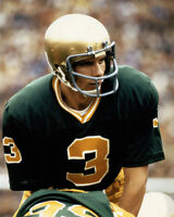 Notre Dame Fighting Irish JOE MONTANA Glossy 8x10 Photo Football Print Poster