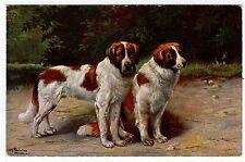 SAINT BERNARD TWO DOGS RARE OLD DOG ART POSTCARD