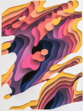 Riss print by 1010 signed with COA Ltd Ed leikela poster whatson chevrier cave